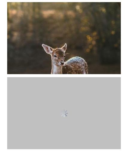 jQuery图片懒加载延迟加载滚动加载特效