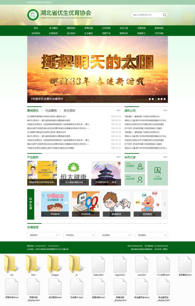 绿色大气响应式优生优育协会政府门户网站模板