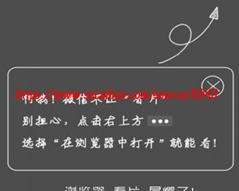 微信不死域名源码 微信域名防封技术  完全开源无域名授权 自适应手机