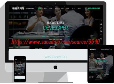 PHP网络公司响应式网站设计建站企业模板 程序可以自行添加背景音乐